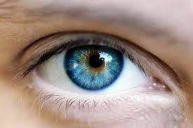 მხედველობის შემოწმებ... смотреть онлайн бесплатно